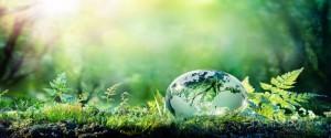 Cartel alegórico al medioambiente