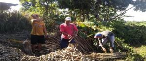 Los productores escuchan saberes de la ciencia para mejorar los suelos mientras preparan sus siembras. /Foto: Dagmara Barbieri