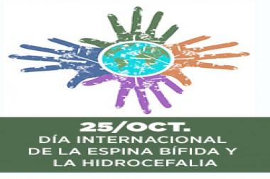 Cartel alegórico al Día Internacional de la Espina Bífida y la Hidrocefalia