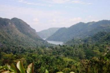 Tarea Vida, un imperativo en el Jardín Botánico de Cienfuegos