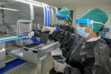 Laboratorio de Biología molecular durante el procesamiento de muestras de ADN. Foto: José Manuel Correa