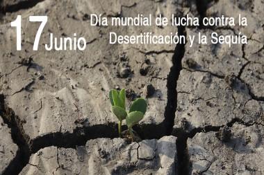 Imagen alegórica al Día Mundial de Lucha Contra la Desertificación y la Sequía
